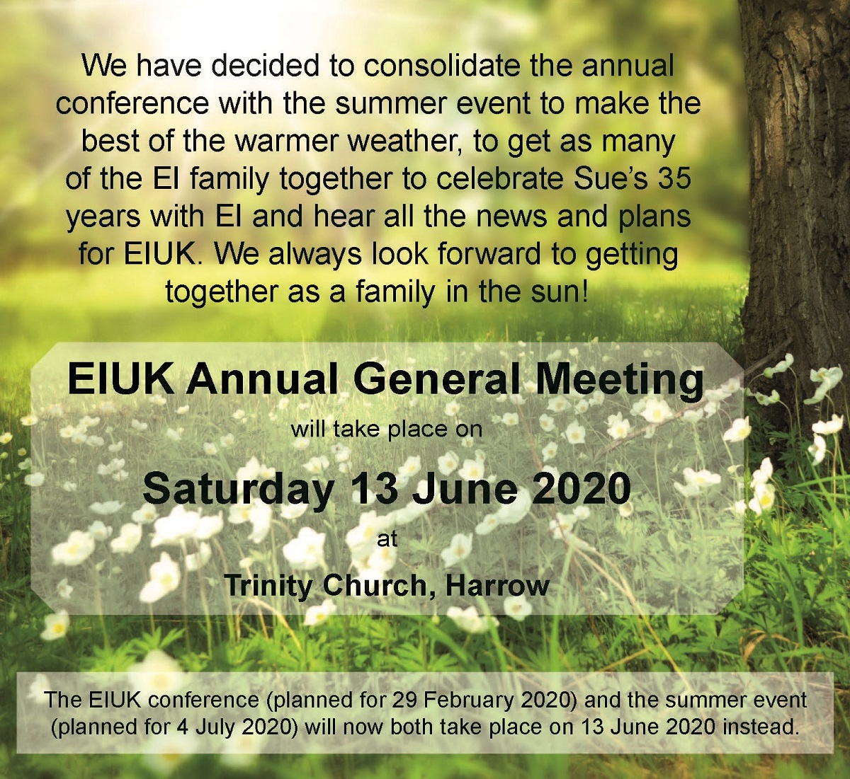 EIUK Annual General Meeting : 13 June 2020