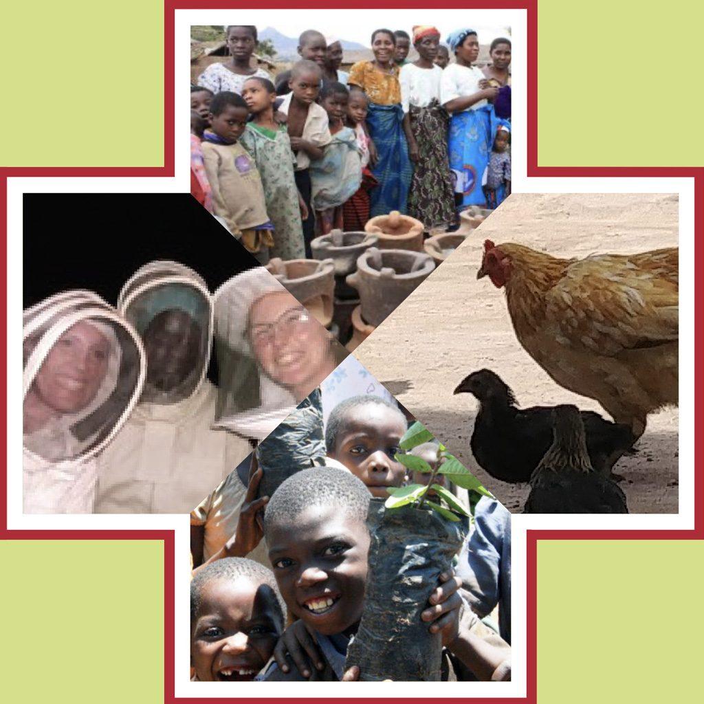 11 Whole Village Health Tanzania